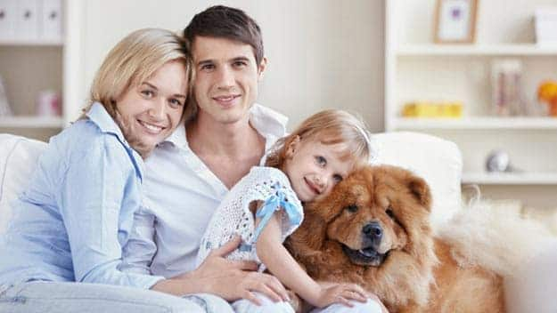 Wills & Trusts dog-young-family Direct Wills Berkshire